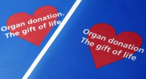 Would you consider donating an organ?