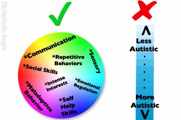 The Autism Spectrum