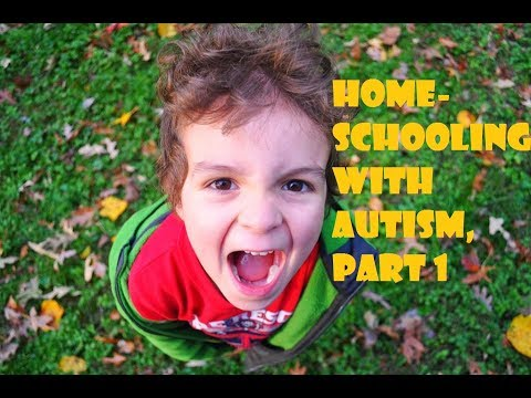 Homeschooling an Autistic Child