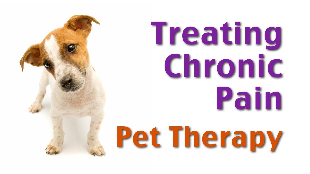 Treating Chronic Pain: Pet Therapy?